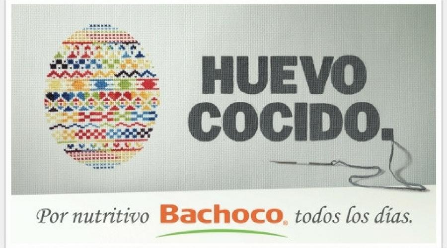 anuncios de publicidad de bachoco